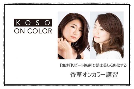 【無料】リピート施術で髪は美しく進化する 香草オンカラー講習